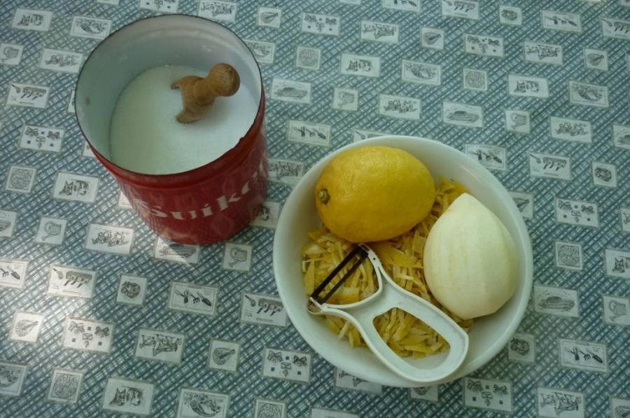 Ingredienti Bibita frizzante di sambuco
