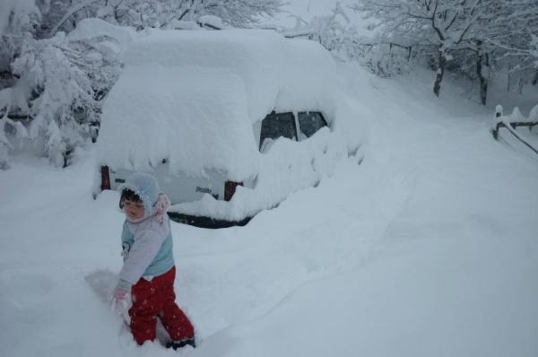 La panda 4x4 sotto la neve