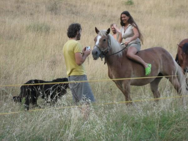 Mi piacciono i cavalli