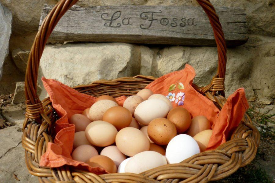 Le uova dalle nostre galline