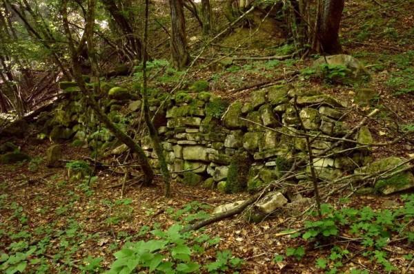 Segni di civiltà del passato: un muro a secco lungo il Riolco