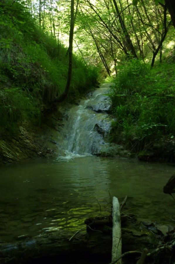 Piccolo lago ed una piccola cascata lungo il Riolco