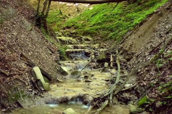 Piccole cascate con calcare