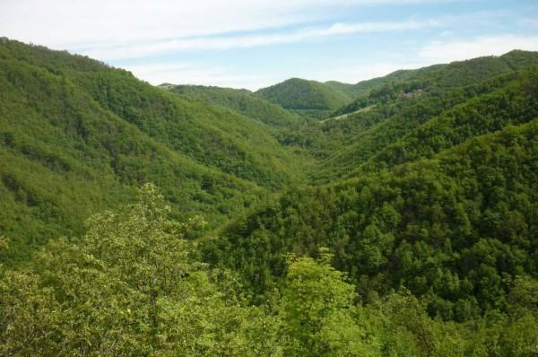 Val Tassaro