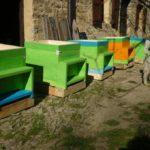 Cinque idee per facilitare il lavoro dell'apicoltore