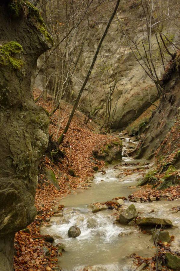 Rio Tassaro dopo la cascata