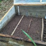 Costruire un semenzaio a letto caldo fai da te.